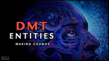DMT Entities and Higher Dimensional States of Consciousness