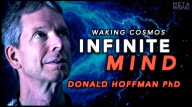 Is there an Infinite Mind? | Donald Hoffman Ph.D. | Waking Cosmos