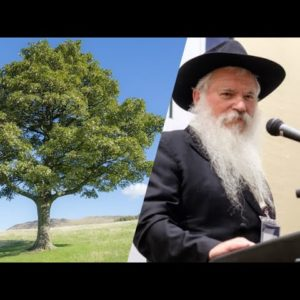 The Blossoming of a New World: A Tu Beshvat