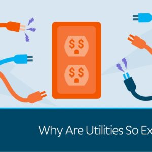 Why Are Utilities So Expensive?